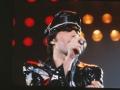 Freddie Mercury - 1978